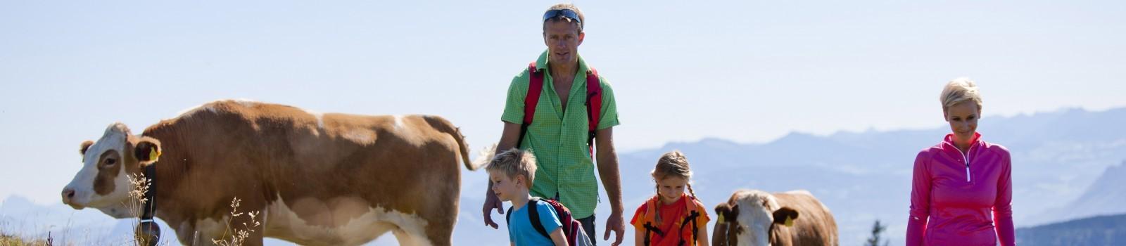 Almwanderungen in Berchtesgaden